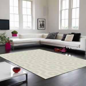Echo EC02 Geo Taupe Rug By Asiatic