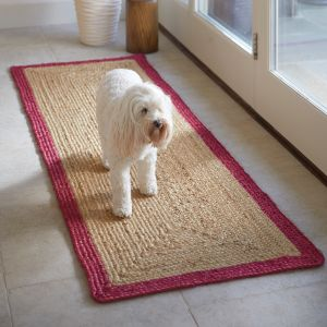 Jute Raspberry Bordered Rug by Origins