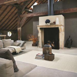 Pinto 29609 Detail Wool Rug by Brink & Campman