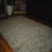 Light Beige 0903 Glasgow OPUS Luxury Shaggy Rug