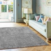 Diva Silver Shiny Polyester Rug by Asiatic
