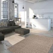 Funky FKY 300 Cappuccino Plain Rug